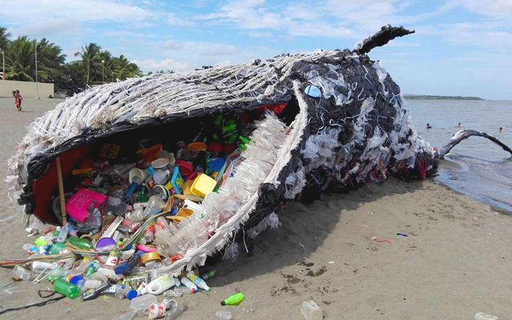 c5e08be650e694467d9e7386953fbcd5--plastic-pollution-the-ocean